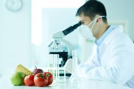 What Is The Most Important Requirement For All Living Things by Nutrition What Is It And Why Is It Important