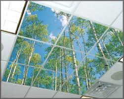 decorative ceiling light panels decorative light diffuser panels motavera com