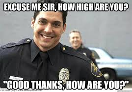 How High Are You Meme - excuse me sir how high are you good thanks how are you off