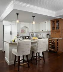 kitchen beach design magnificent bar chairs with backs decorating ideas gallery in