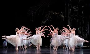 swan lake corps de ballet the royal ballet youtube
