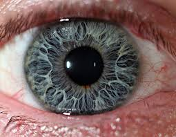 eye pain from light red eye light sensitive pain tips and tricks from doctors