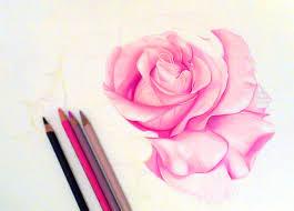 16 flower drawings jpg download