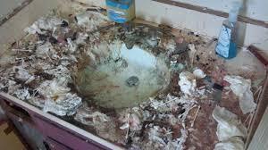 Messy Bathroom Bathroom Vanity In Hell Duck Duck Gray Duck