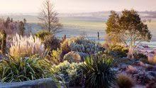 The Summer And Winter Garden - hyde hall in winter bahçe ağaçlar ve yapraklar garden u0026 trees