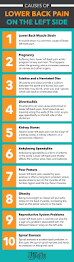 Spine Map Best 25 Spinal Nerve Ideas On Pinterest The Nerve Spinal