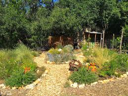 Rock Garden Perennials by Hill Country Garden Charm In The Heart Of San Antonio U2026 Diana U0027s