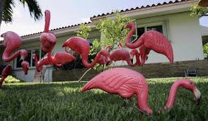 pink flamingos lawn ornaments things you didn t about plastic