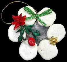 sand dollar shell ornaments set of 6 the nature company