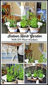 indoor herb garden ideas mini indoor herb garden with plant cages