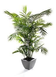 closer2nature artificial 6ft 6 areca palm tree portofino