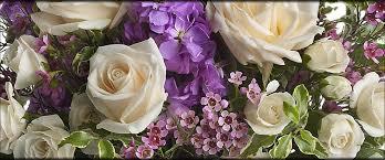 washington d c florists flowers in washington d c dc
