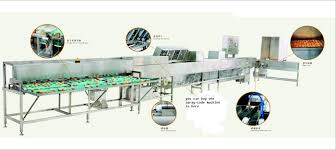 full automatic cleaning and grading machine for egg products from
