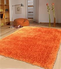 Orange Area Rug 8x10 Beautiful Traditional Persian Oriental Handmade 8x10 Area Rug And