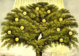 oldest examples of u0027tree of life u0027 designs discovered in domuztepe