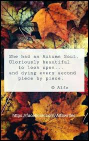 best 25 autumn quotes and sayings ideas on fall