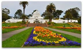 Golden Gate Botanical Garden San Francisco Conservatory Of Flowers Tips To Visit Pics