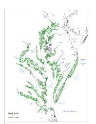 Chesapeake Bay Map Sav In Chesapeake Bay Monitoring 2006 Report