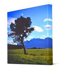 Landscape Canvas Prints by Custom Canvas Prints Signs Com