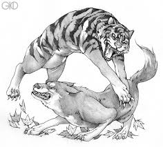 fable of wolf and tiger by gido on deviantart