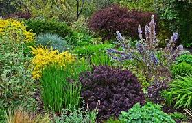 Botanical Gardens Seattle Dazzling Places Seattle Tourist Attractions Seattle S Best