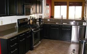 cabinet glamorous kohler farm sink amazing lowes cabinets design