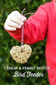 kid friendly bread and peanut butter bird seed feeder