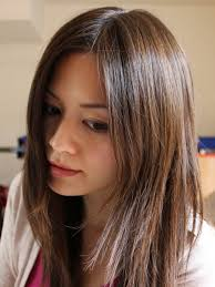 hair highlight for asian dark brown hair with blonde highlights and black lowlights