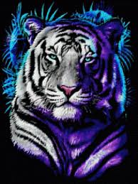 white tiger with blue wallpaper white tiger blue glowing