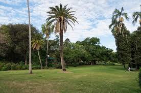 City Botanic Gardens City Botanic Gardens In Central Brisbane In Queensland Australia