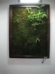 moss art growing a masterpiece the japan times