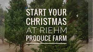 christmas trees u0026 family fun riehm produce farm