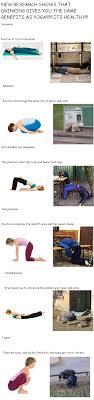 Drunk Yoga Meme - drunk yoga