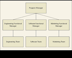 functional managers they wear many hats