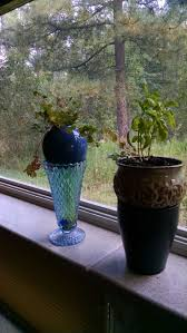 Herb Grower S Cheat Sheet Top 25 Best Hydroponic Herb Garden Ideas On Pinterest Indoor