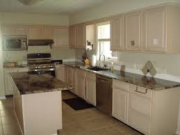 What Color Should I Paint My Kitchen Cabinets Help Should I Paint My Cabinets Black Or Cream Or Taupe