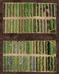 Beginner Vegetable Garden Layout by Planning Your Vegetable Garden Martha Stewart