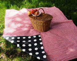 Picnic Basket Ideas Decor U0026 Tips Red And White Picnic Blanket For Waterproof Picnic