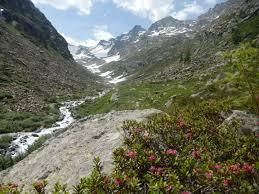 Pyrenees Mountains Map Spanish Pyrenees Nigel Armistead