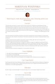 Picture Of Resume Examples by Vice President Of Sales Resume Samples Visualcv Resume Samples