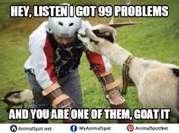 Billy Goat Meme - images of goat memes png