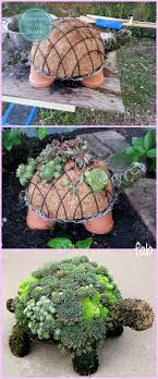 diy succulent succulent turtle tutorial video