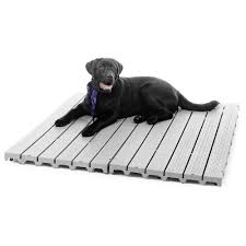 Outdoor Kennel Ideas by Six Popular Types Of Outdoor Kennel Flooring Animal Hub