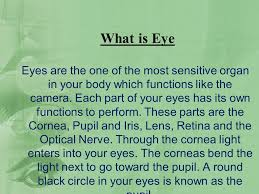 Eyes Are Sensitive To Light How To Choose Best Eye Surgeon In India What Is Eye Eyes Are The