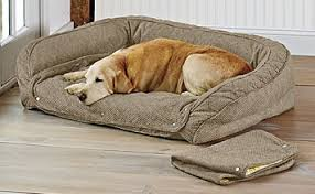 memory foam dog beds u0026 orthopedic dog beds orvis