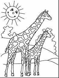 coloring pages surprising giraffe coloring page pages free