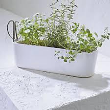 herbs planter carnivale mini planters crate and barrel