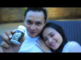 hipper herbal pria perkasa youtube