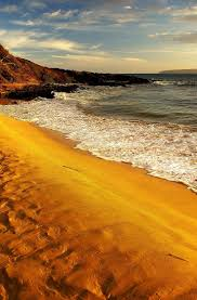 Sand Beach by 34 Best Orange Sands Images On Pinterest Sands Sand Beach And