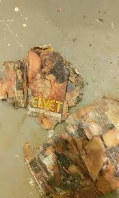 1848 the bone and the basement funemployment radio